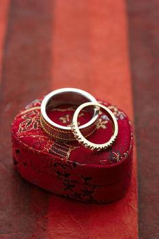 Eleni Engaged: Looking Ahead to 2009