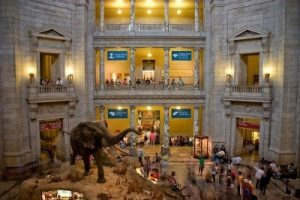 Would You Pay $7.50 to Visit a Smithsonian Museum? The Week in Travel News