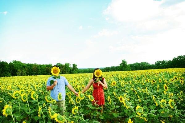 2011-10-4-SunflowerEngagement6