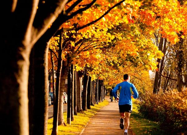 Thanksgiving Workout Plan: Fit Check