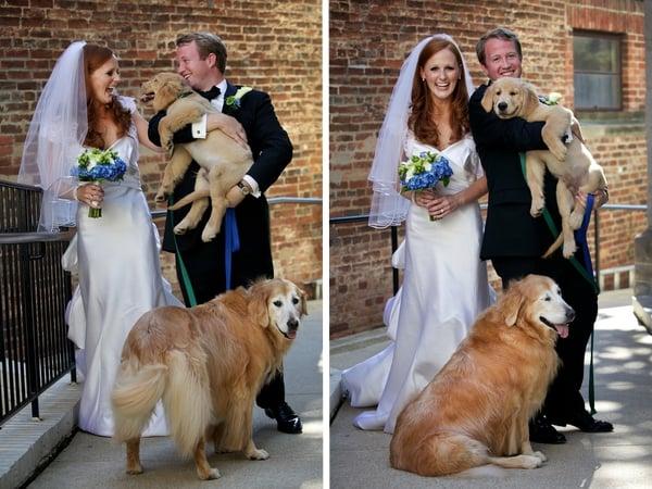 Washington Real Weddings: Maura and Patrick