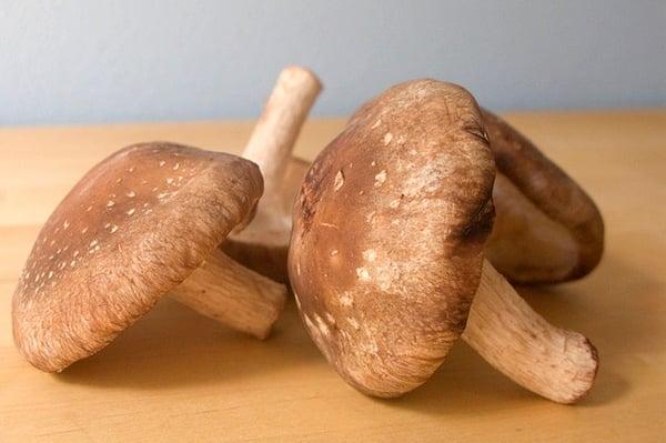 The Powerful Health Benefits of Shiitake Mushrooms