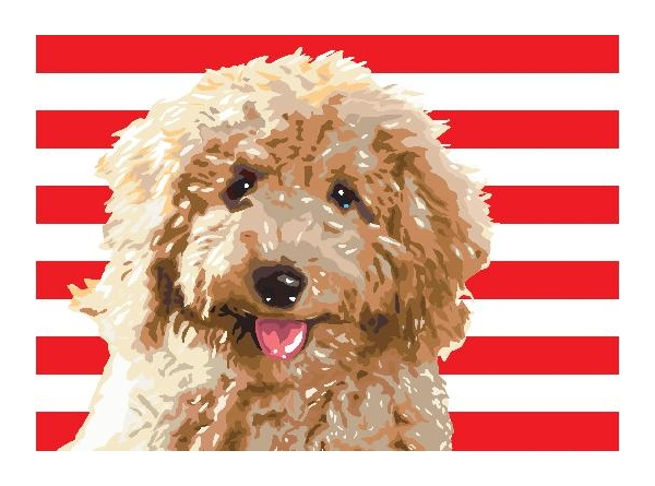 President's Neighbor Lobbies for Labradoodle