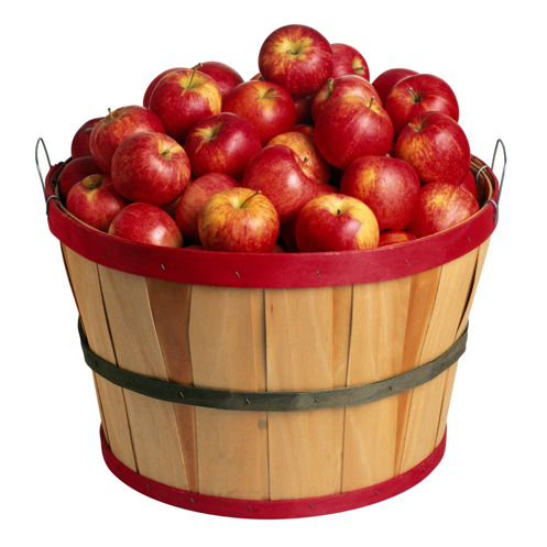 Hurry Up, Apple-Picking Season's Almost Over!