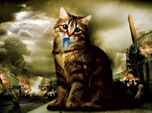 apocalypse_meow_final.jpg