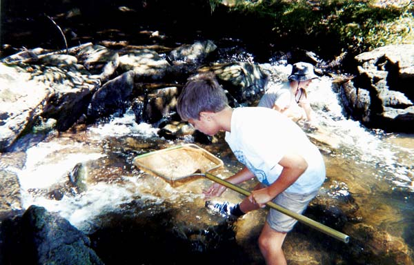 Nature Camps for Kids