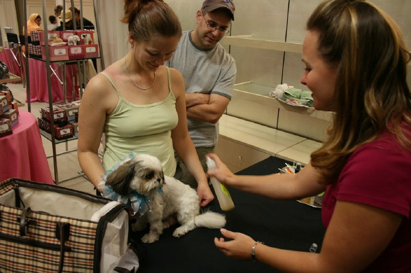 Pampering Pooches at Saks Fifth Avenue