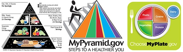 "New ""MyPlate"" Image Replaces USDA Food Pyramid (Poll)"