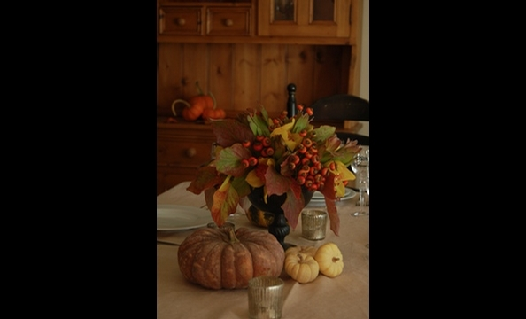 Dogwood foliage, rosehips, cymbidium orchids, and gold strike protea in a bronze urn, surrounded by heirloom pumpkins.