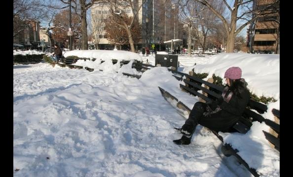 Taking a break on a snowy day