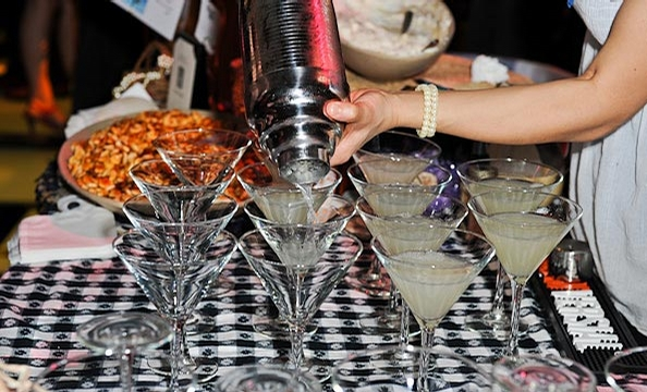 Artini 2011 Party Pictures
