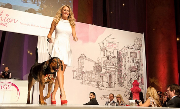 Fashion For Paws 2011