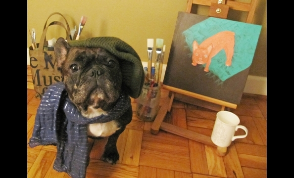 Gromit, a French bulldog, decided to go French for Halloween. Tres chic!