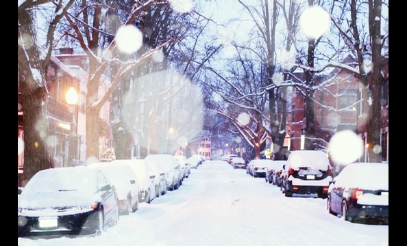 Olive Avenue in Georgetown