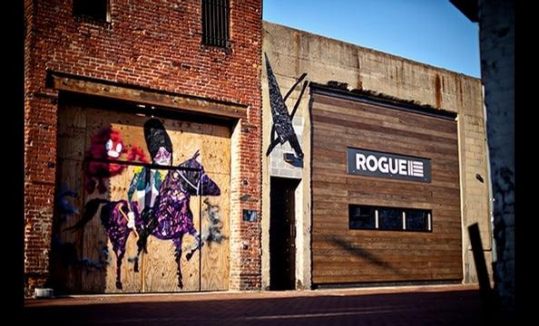 Rogue 24