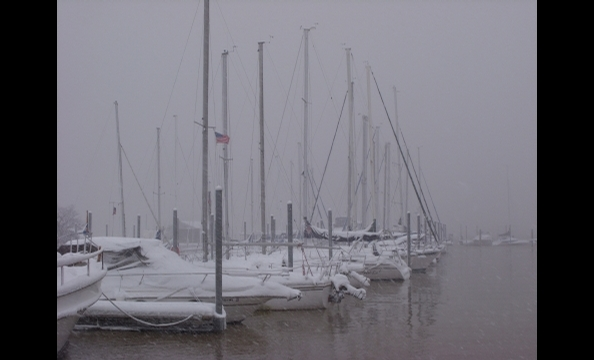 Taken on February 6 at the Quantico marina.