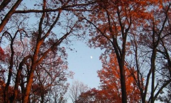 This was taken at Shenandoah National Park.