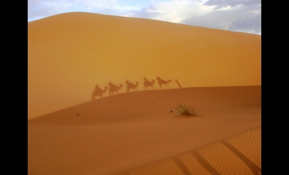 A State Department employee sent to Morocco, Aaron Edwards shot this photo during a camping excursion in the Sahara Desert. The photo shows the shadow of his group on camel back, cast on a nearby dune by the setting sun.
