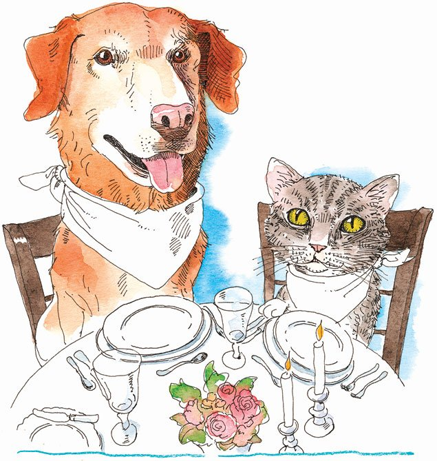 What Foods Are Best For Your Pets?