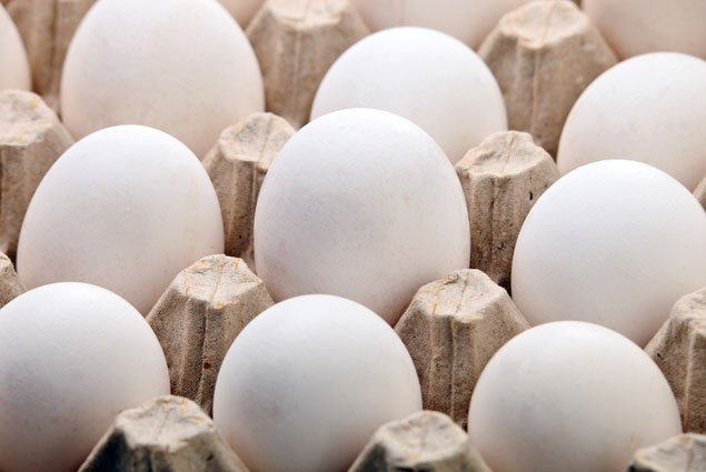 Memo to RNC/DNC Conventioneers: Watch Out for Acid Eggs