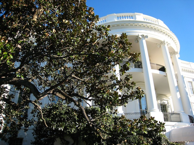 Highlights of the White House Fall Garden Tours