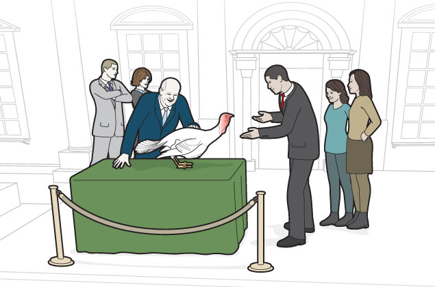 Anatomy: Picking the Turkeys Pardoned by the President