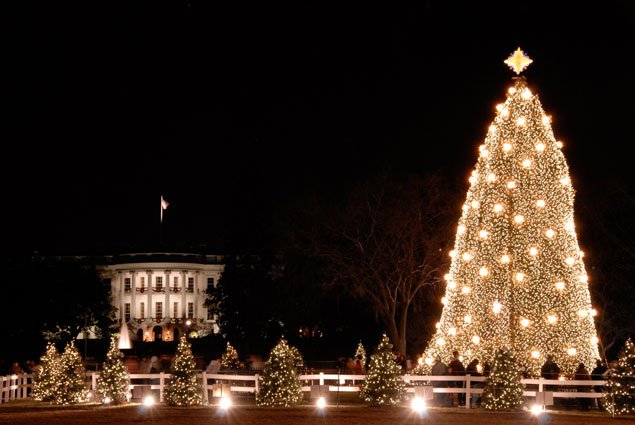 National Christmas Tree Lighting.What You Need To Know About Thursday S National Christmas
