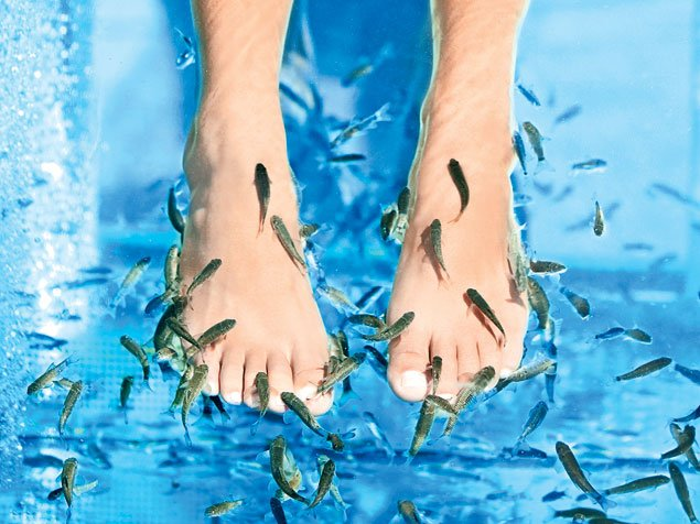 Do Fish Pedicures Really Work?