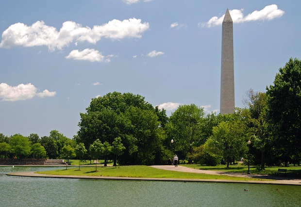 DC Named a Top City for Urban Forests