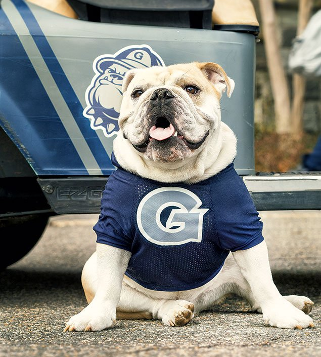 The Making of a Mascot: Georgetown's JJ the Bulldog (Video)