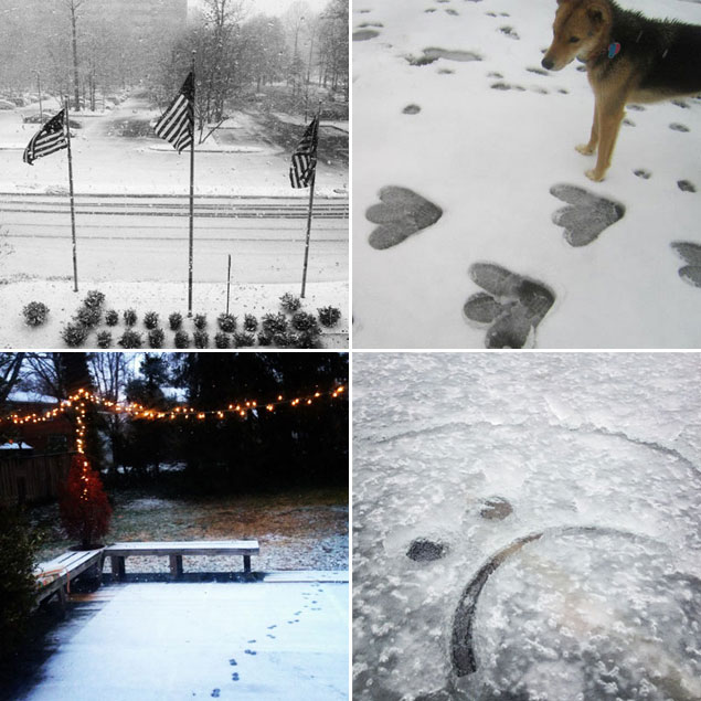 So Much for the Snowquester (But We Still Have Photos)