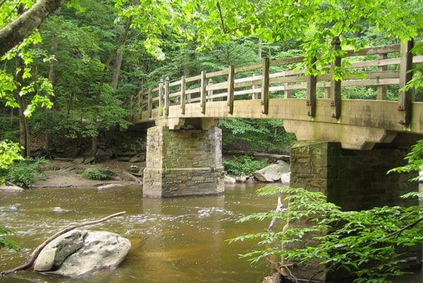 Favorite Running Trail: Rock Creek Park trails