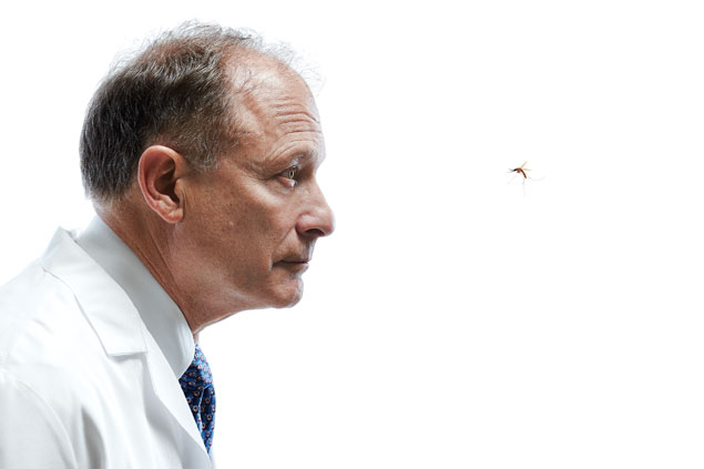 Dr. Hoffman vs. the Mosquito