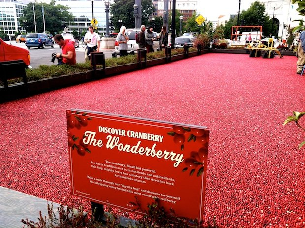 A Huge Cranberry Bog Has Taken Over Union Station