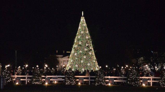 Winter Holidays in Washington: Tree-Lighting Ceremonies, Festivals, and Holiday Markets