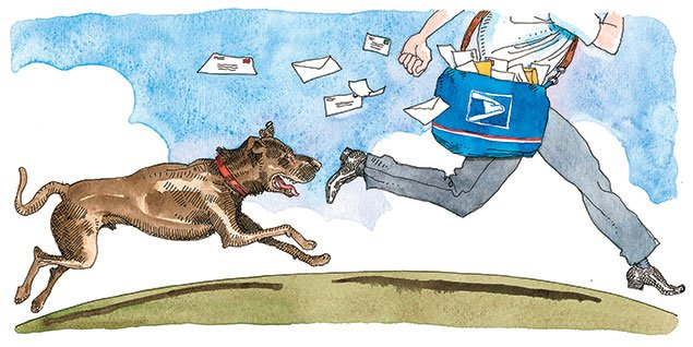 Going Postal: Your Dog and Mail Carriers