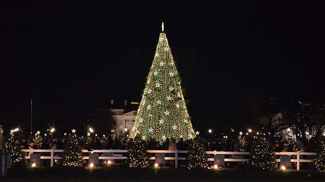 UPDATE: The Lighting of the National Christmas Tree Means Likely Rush Hour Gridlock for Friday Evening