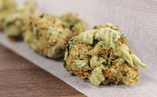 Maryland Senate President Supports Legalized Marijuana