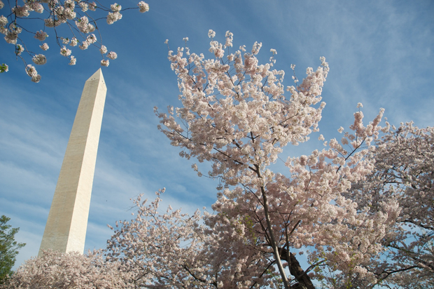 Washington Monument Tour Reservations Now Available