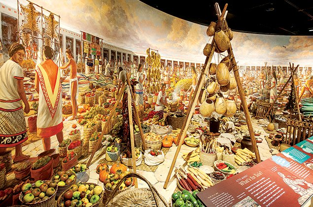 Art Preview: Food—Our Global Kitchen at the National Geographic Museum