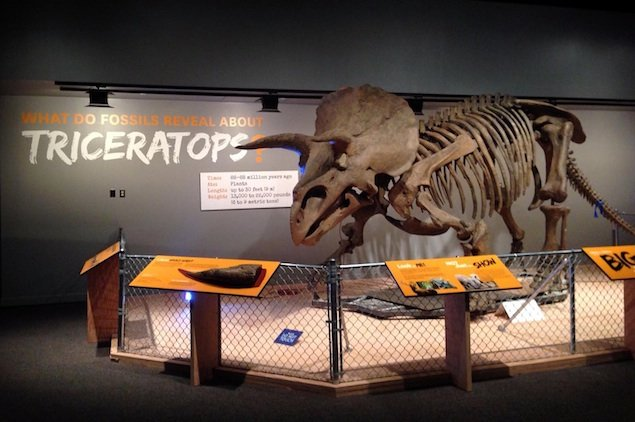 "Museum Preview: ""The Last American Dinosaurs"" at the Natural History Museum"