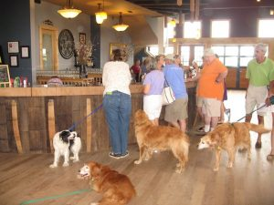 Destination Dog: Barrel Oak Winery