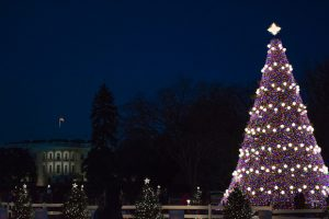 The Best Christmas Lights Around Washington (Photos)