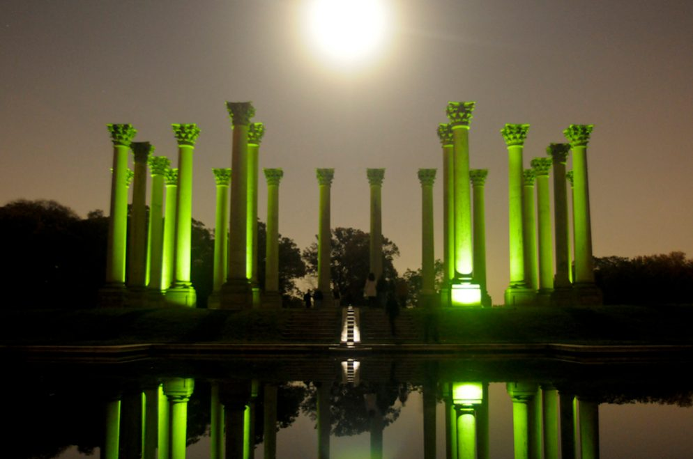 National Arboretum by Moonlight