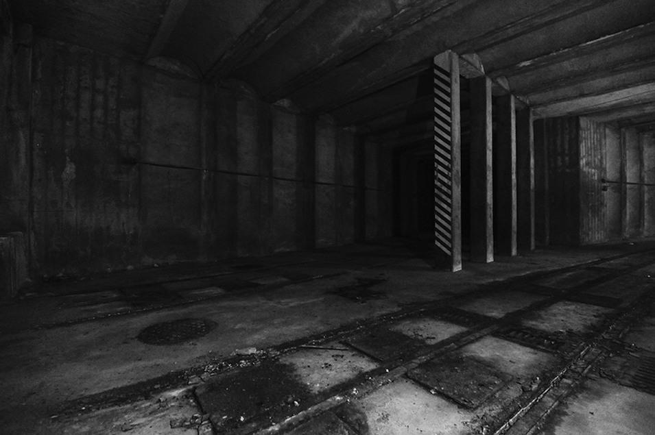 Explore Washington's Hidden Wonders on Obscura Day