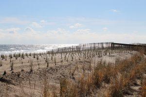 Where Washington-Area Beach Vacationers Travel From