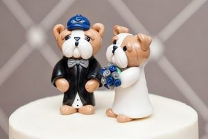 28 Awesome Ideas for Your Georgetown Hoya Wedding