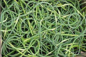 What the Heck Do I Make With Garlic Scapes?
