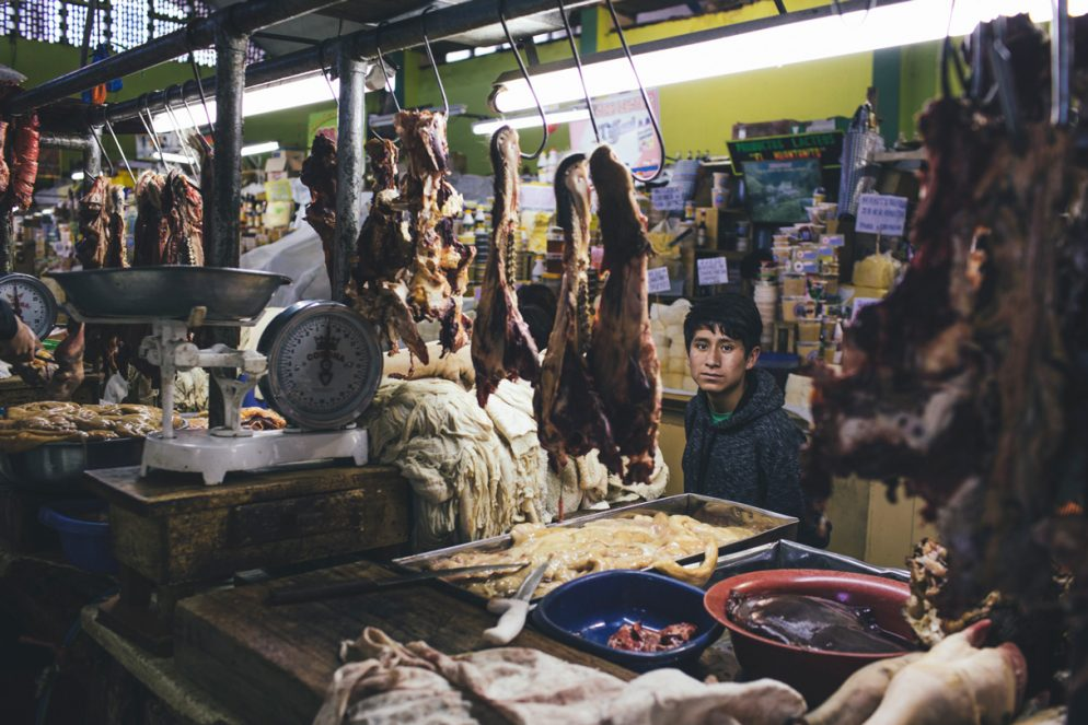 Behind the Scenes: Exploring Peru for the Folklife Festival