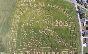 There's a Giant Corn Maze in Maryland Shaped Like Taylor Swift's Face